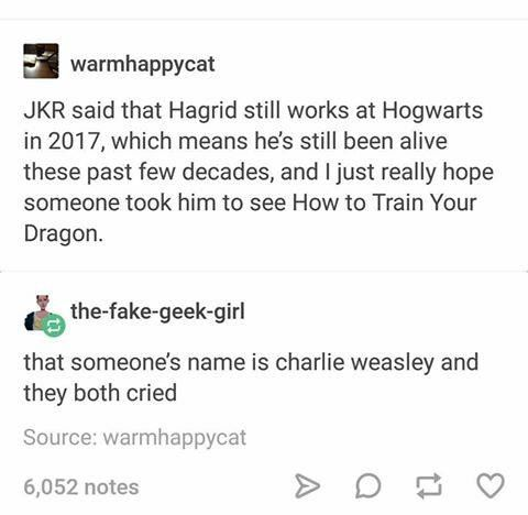 Can you imagine Hagrid in a muggle theater? Crushing three seats and crying in the back as the muggles are shooting at all the dragons?