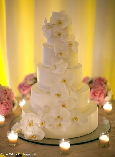 Cake Bakery Falmouth Ma