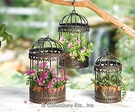 planted bird cages