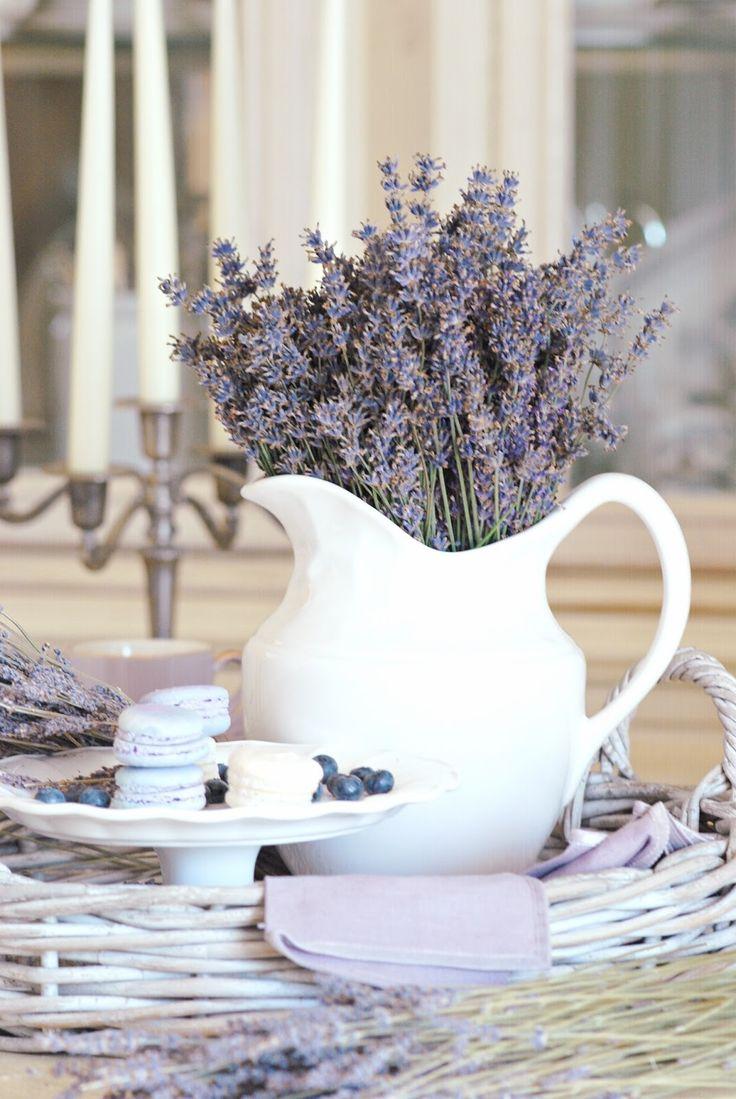 Lavendel in een kan