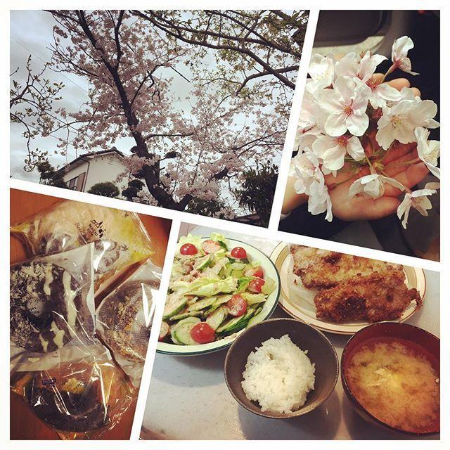 うちの桜も満開🌸 ママ、プレゼント!って、 桜の花…!!(息子) 可愛すぎかよw💕 ドーナツも頂いた🍩 ありがと(´・∀・`)❤️ 今日の晩ご飯は、 娘が手伝ってくれたよ! ここ最近、 なんだか幸せ過ぎる…😂💞 #桜の花#満開#四月#休み#庭#桜の木#プレゼント#息子から#可愛い#ドーナツ#頂き物#感謝#ありがとう#今日の#晩ご飯#娘と#サラダ#卵の味噌汁#白飯#豚カツ#ボリューム満点#肉#豚肉#最近#幸せ#過ぎる