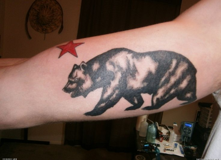 california bear tattoo - Google Search