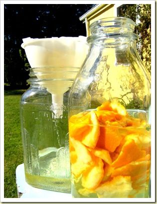 Make Your Own Citrus Vinegar Cleaner