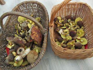 U Ciotałki: Leśne smaki, czyli jak się zupa grzybowa z żurkiem...