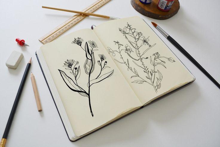 #warunga_illustration  Вернемся к теме скетчбука.  Творчество Ани. Растительный мотивчик этой осени. Прогулки по улице, покрытой утренним инеем, вдохновляют вспомнить полевую осоку.  P.S. Настоящий художник держит перо в руках каждый день.
