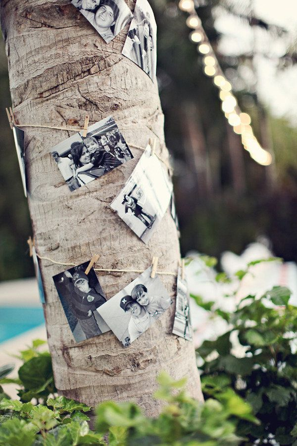 a tropical way of displaying family photos - string 'em up around a palm tree  Photography by http://brandismythphotography.com, Wedding and Floral Design by http://thedazzlingdetails.com