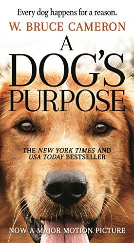 A Dog's Purpose: A Novel for Humans by W. Bruce Cameron https://smile.amazon.com/dp/0765388103/ref=cm_sw_r_pi_dp_x_xn-vyb865SJA3