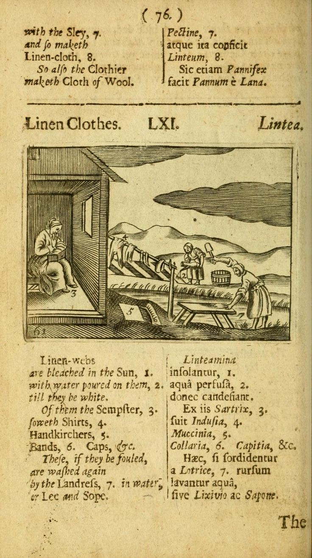 Joh. Amos Commenii Orbis sensualium pictus: : h...
