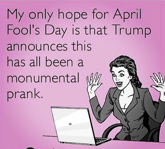 53f7af2feef53797f9eaf37327032a7a 21 best april fool's images on pinterest april fools, april