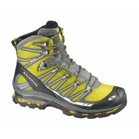 SALOMON Cosmic 4D 2 GTX Men's Hiking Boots