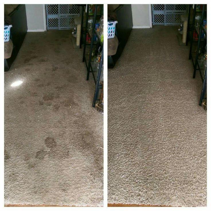 Pin Van Complete Carpet Cleaning Llc Op Carpet Cleaning