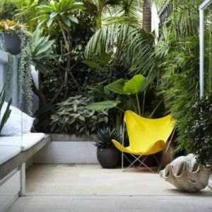 Small Courtyard Gardens With Tropical Plants , Beautiful Small Courtyard Gardens In Garden And Lawn Category