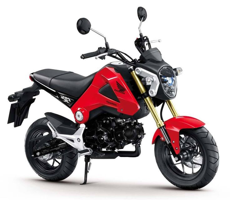 Stunning 2014 Honda Grom Photos Gallery