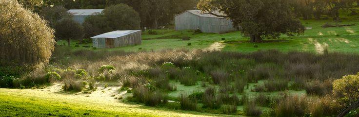 Meelup Farm Dunsborough - Shaun Jones