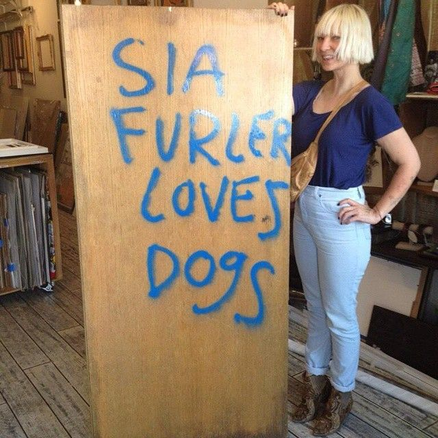 Sia's I LOVE DOGS FACE