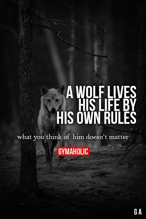 """A wolf lives his life by his own rules. What you think of him doesn't matter."" Run It Out"