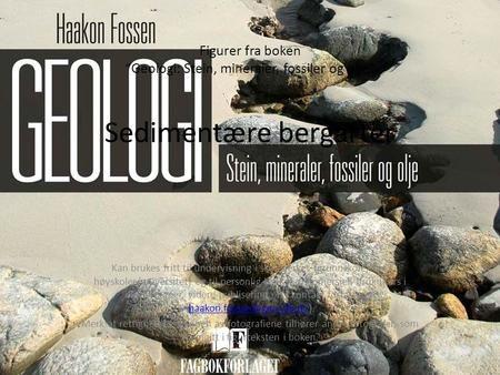 """Figurer fra boken """"Geologi: Stein, mineraler, fossiler og olje"""" Sedimentære bergarter Kan brukes fritt til undervisning i skoleverket (grunnskole, vgs,"""