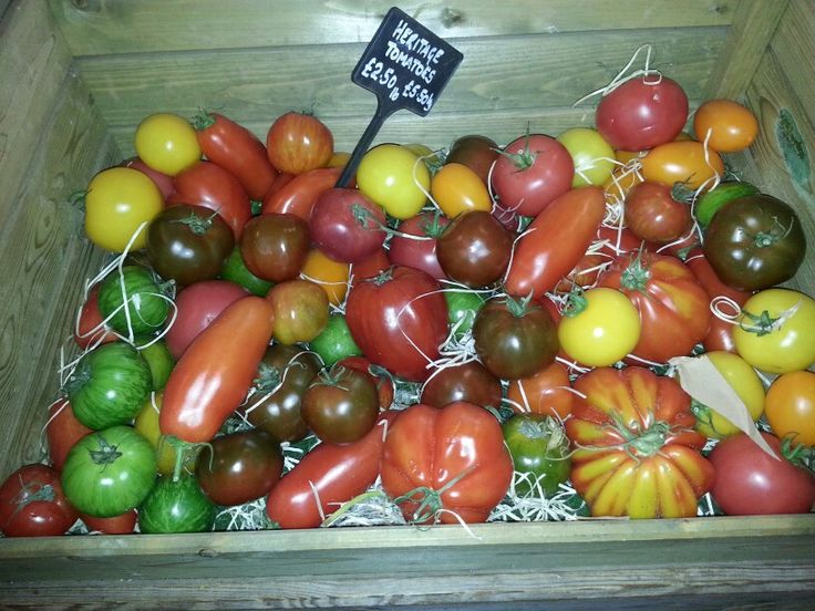 Heritage Toms