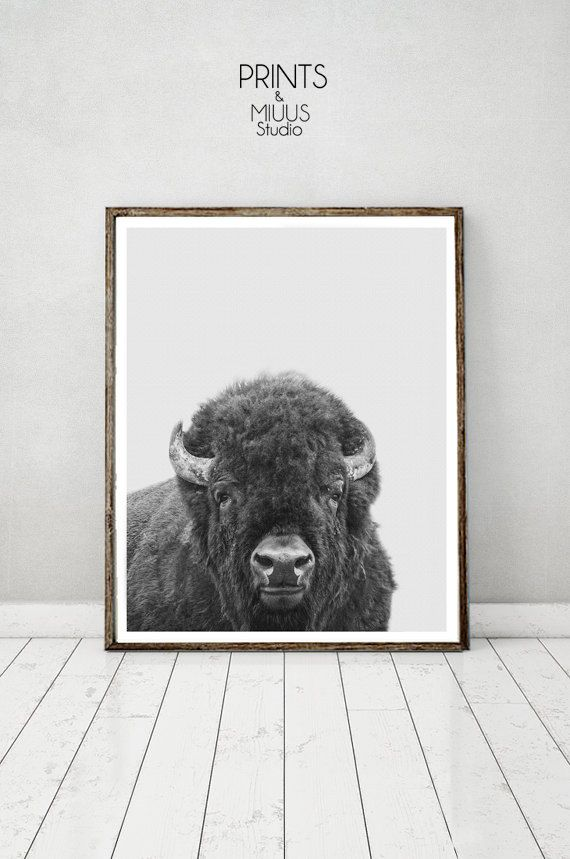 Buffalo Print Bison Wall Art Instant Download by PrintsMiuusStudio