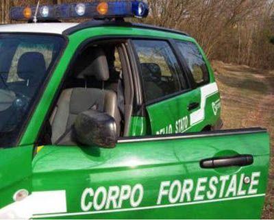Santeramo in Colle: casa deposito e pollaio abusivi denunciato il trasgressore