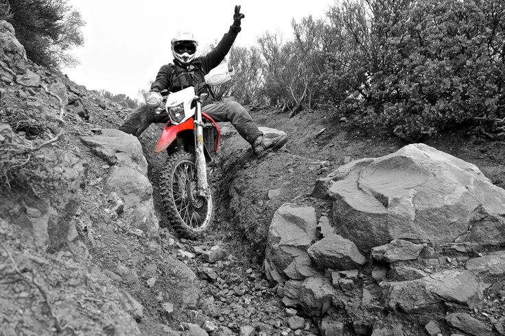 The CRF250L