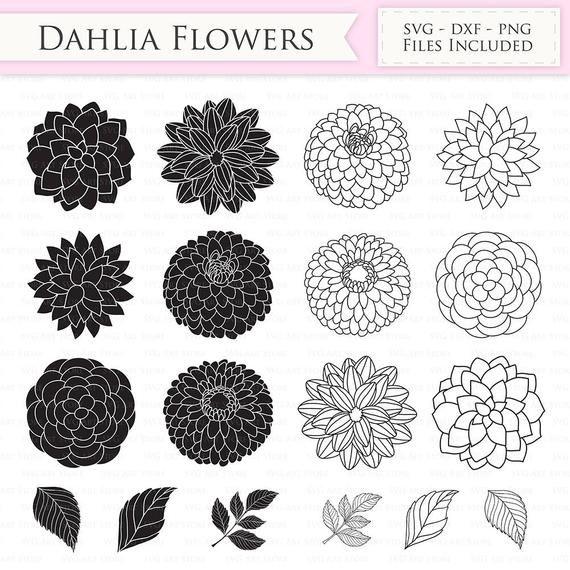 Dahlia Flowers Svg Files Peony Flowers Outline Floral Svg Etsy In 2020 Flower Outline Dahlia Flower Dahlia Flower Tattoos