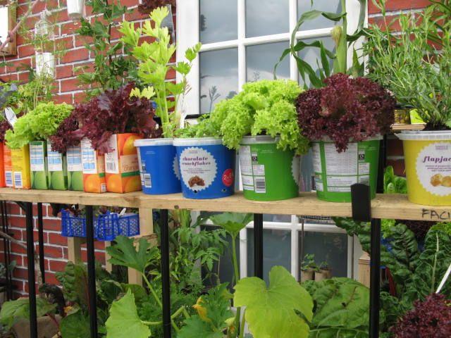 楽しくなっちゃうベランダ菜園 - garden barn 英国ガーデニング雑貨とgardens of paradiseの白シャツの店