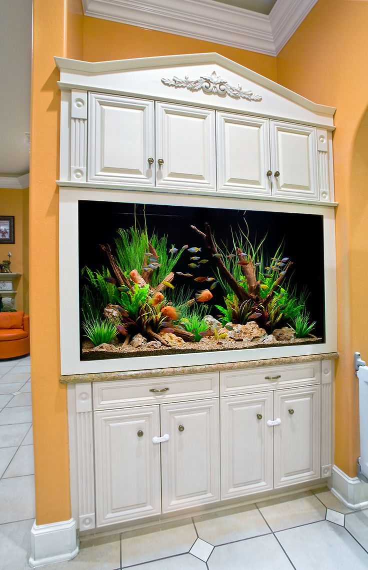 Aquarium Design Group - A Built-in Aquarium with Custom Cabinetry