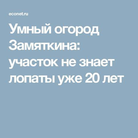 Умный огород Замяткина: участок не знает лопаты уже 20 лет