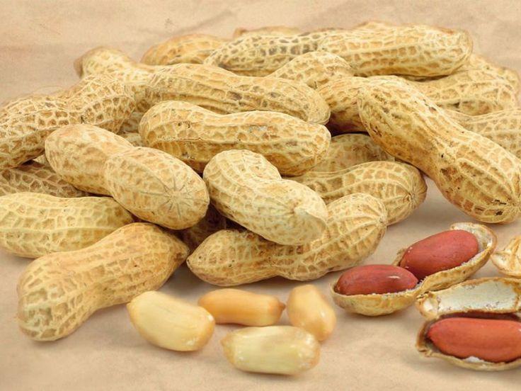 Quali sono le proprietà, i benefici e le controindicazioni delle arachidi? Scopriamo di più in merito.