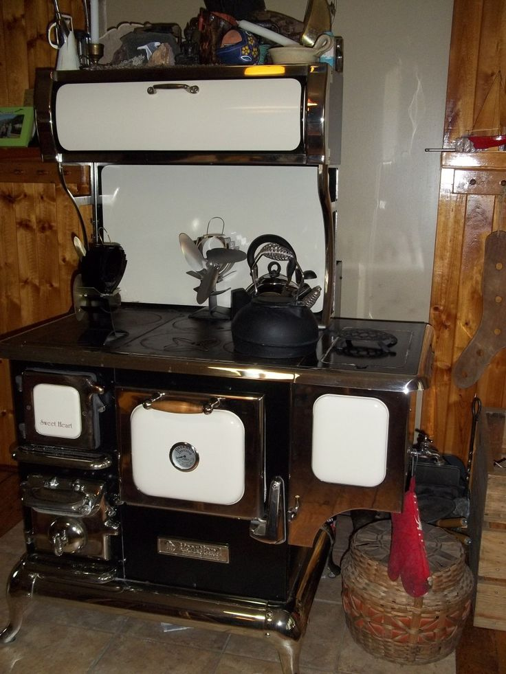 Yesterday, I did my mid-winter cleaning out of my wood cookstove. I had planned it for then because the outside temperatures were predicted to be about +5C (41F). The stove and ashes need to be col...