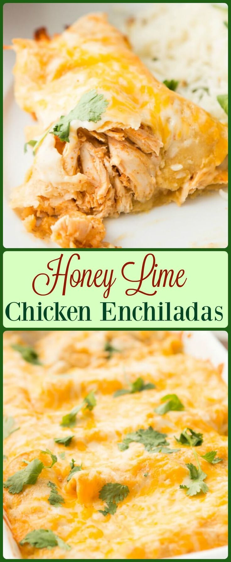 These Honey Lime Chicken Enchiladas have changed our view of Enchiladas forever. The marinated chicken and cheese are so good! ohsweetbasil.com via @ohsweetbasil