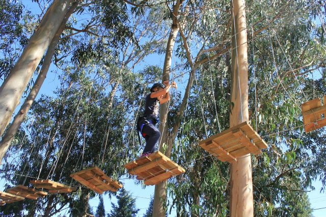 arborismo praticado por criança