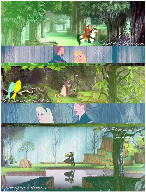 Sleeping Beauty-each bird has a someone-Aurora and Phillip
