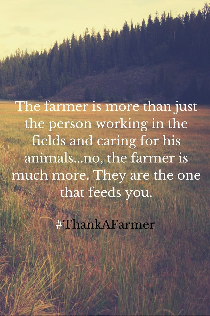 The Farmer Is More Than Just The Person Working In The Fields And Caring  For His Animals. No, The Farmer Is Much More. They Are The One That Feeds  You.