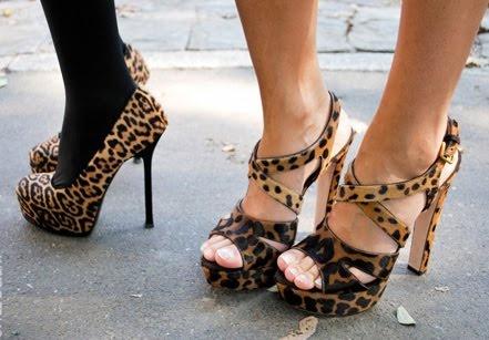 lepard love