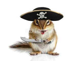 Funny animal pirate, squirrel with hat and sabre