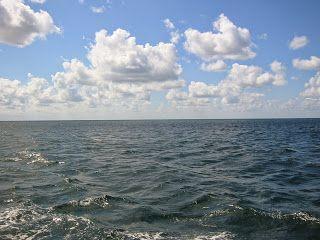 Записки Хитрого Лиса: Море