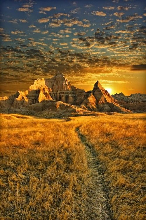 Golden Sunset, Badlands, South Dakota, USA. http://dailytravelideas.com/: Southdakota, Nature, Sunset, National Parks, South Dakota, Places, Photo