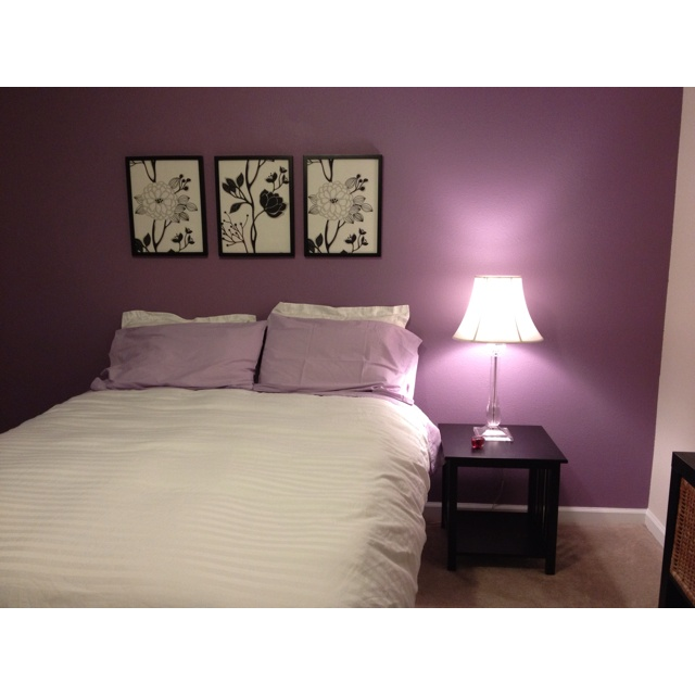 purple accent wall for the home