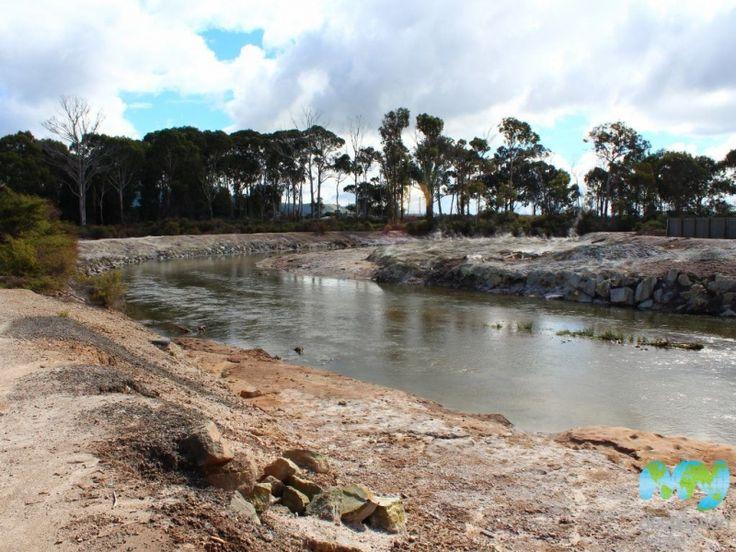 Puarenga Stream in #Rotorua #NewZealand