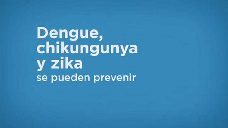 Prevención del dengue, chikungunya y zika