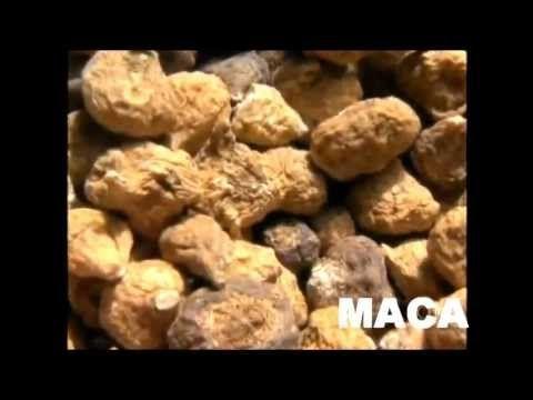 Maca Peruana - Afrodisíaco, Vitalidade e Fertilidade