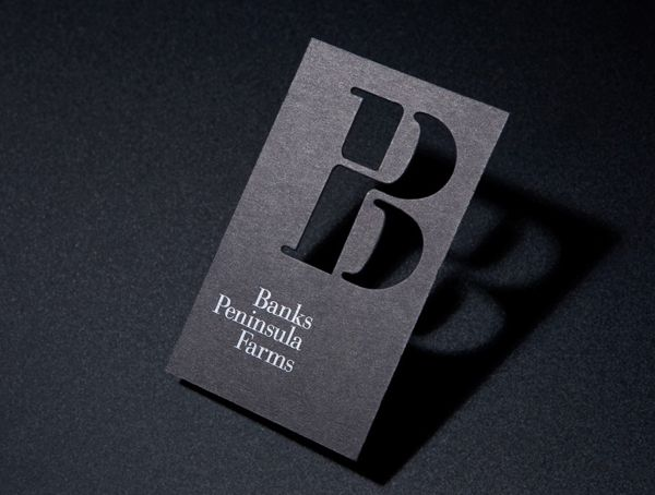 Logo and black die cut business card with white foil