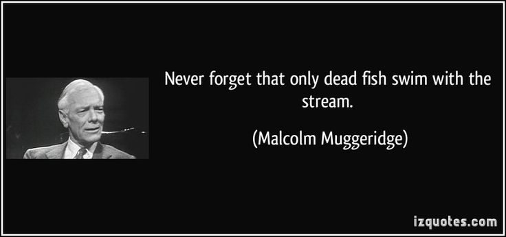 """""""Never forget that only dead fish swim with the stream."""" ― Malcolm Muggeridge"""