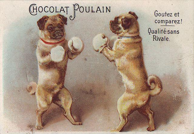 426 best images about Pug Stuff on Pinterest | Cartoon ...