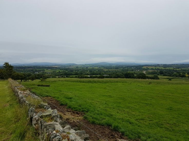 View from Old Kilcullen