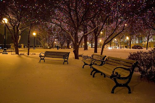 Lights and snow at night