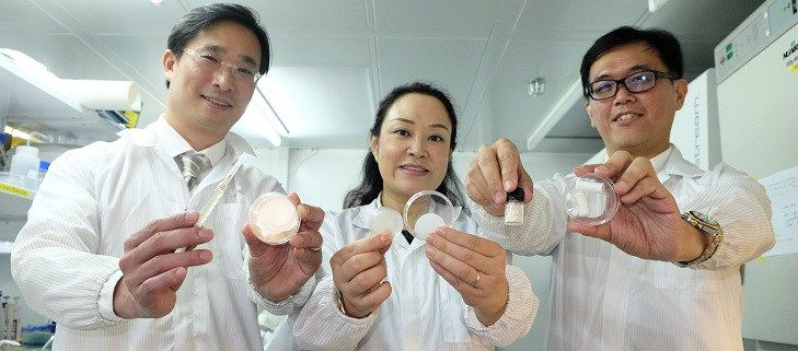 Scientists from Nanyang Technological University, Singapore (NTU Singapore) have developed a new gel patch prototype that could speed up the healing of a skin wound while minimising the formation of scars. The team unveiled the patch today as a proof-of-concept. When fully developed, this...