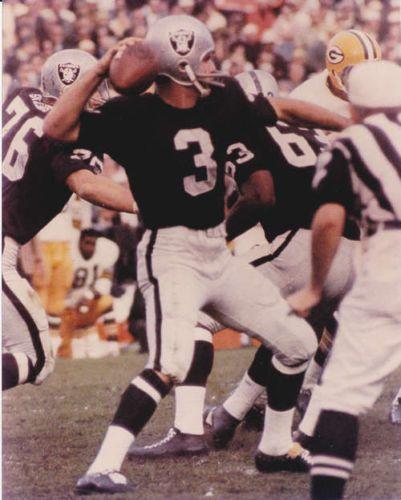 Daryle Lamonica Buffalo Bills 1963-66 and Oakland Raiders 1967-74.